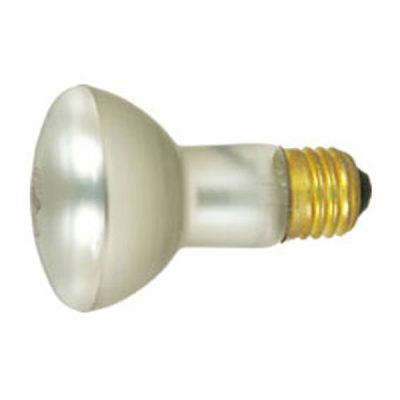 Pool and Spa Light Bulb Feit Electric S-12 100W 100R20/S-12